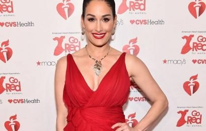 Nikki Bella Reveals Her Surprising Valentine's Day Plans (and Sweet Date!) on Total Bellas