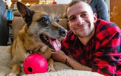 Indiana veteran adopts dog that served alongside him in Afghanistan