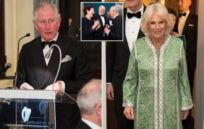 Prince Charles vows to visit ALL of Ireland's 32 counties