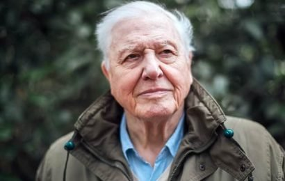 David Attenborough to present 'unflinching' climate change documentary