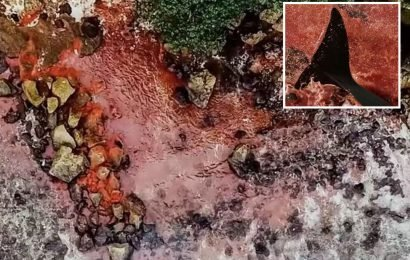Tropical Island waters turn blood red in rare natural phenomenon