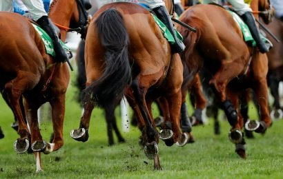 Cheltenham Festival tips: Martin Pipe trends – we help you find the winner of the race live on ITV at 5.30pm today