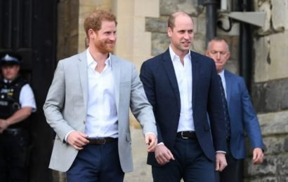 Prince Harry and Prince William Both Did This One Big Thing Before Proposing