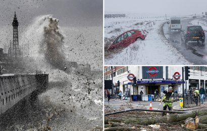 Britain battered by raging 65mph gales as trees uprooted, roofs ripped up and scaffolding torn down