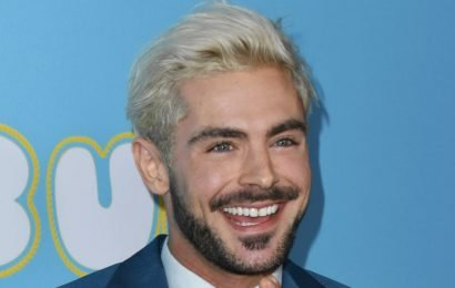 Zac Efron Looking All Sorts of Sexy at His Movie Premiere Will Make You Weak in the Knees