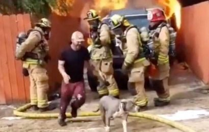 Open Post: Hosted By A Gold-Hearted Hero Saving A Dog From A Fire