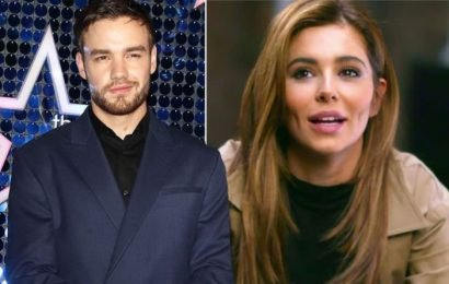 Cheryl: 'Not sure what we'd do without you' Liam Payne gushes over ex in adorable post