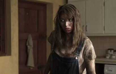 Hole in the Ground review: Seana Kerslake shines as desperate mother in Lee Cronin's assured and creepy debut