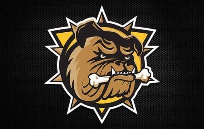 Hamilton Bulldogs fall to Ottawa 67's in Game 1 of OHL playoffs