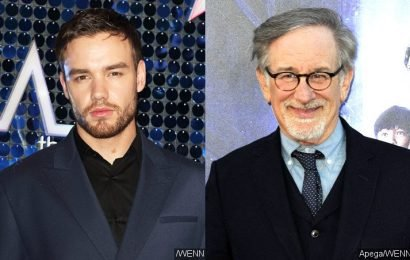 Liam Payne Lets Slip Meeting With Steven Spielberg for 'West Side Story' Remake