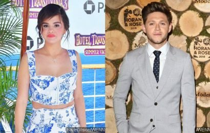 Selena Gomez and Niall Horan's Dating Rumors Debunked, Despite Fans' Excitement