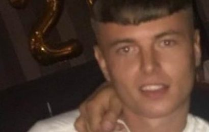 Pictured: Man, 24, stabbed to death during an Easter Sunday brawl