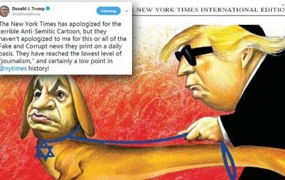 Trump: NYT hit 'lowest level of journalism' with anti-Semitic cartoon