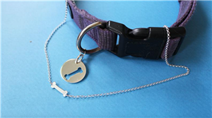 You Can Get A Matching BFF Necklace With Your Dog