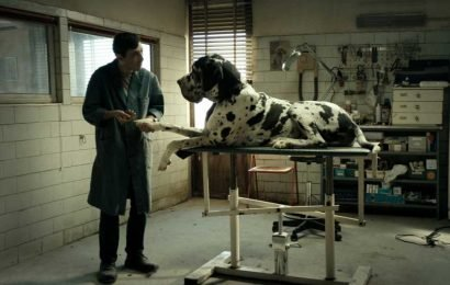 'Dogman' Review: Revenge, Served Italian and Off the Leash