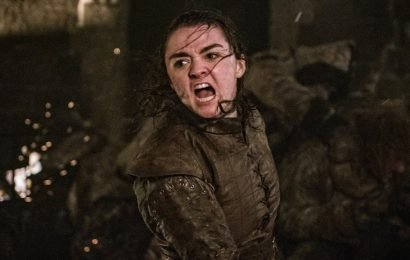 The Very Best Reactions to That INSANELY Badass Arya Moment on Game of Thrones