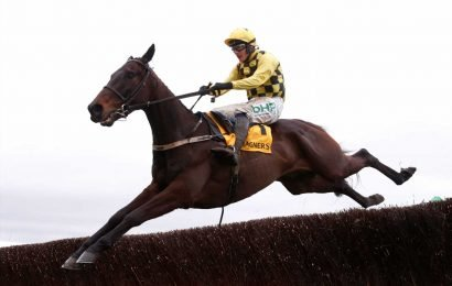 Cheltenham Gold Cup winner Al Boum Photo the star on show in Wednesday Punchestown showpiece