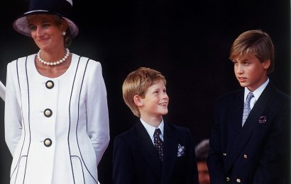 Why Princess Diana Thought Prince Harry Would Make a Better King Than Prince William