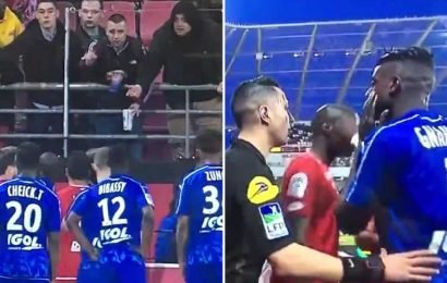 Ligue 1 game halted and players threaten to walk off after Amiens star Prince Gouano confronts fans he believes made monkey noises