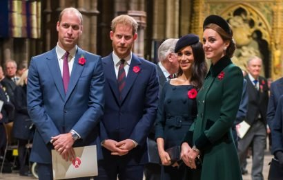 Are Prince Harry and Meghan Markle More Popular Than Prince William and Kate Middleton?