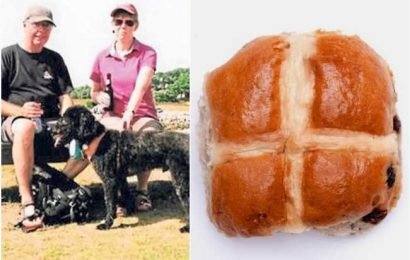 Dog owners warned as pet almost dies after eating 'toxic' hot cross buns