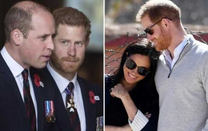 Prince William's concerns over Meghan Markle 'went down quite badly' with Prince Harry, royal biographer claims
