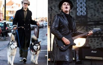 Pete Doherty stabbed by a hedgehog spine and rushed to hospital after it gets infected