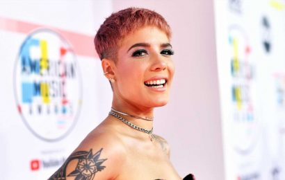 You Must See This Pic Of Halsey's Back Injury From 'Naked' Rock Climbing