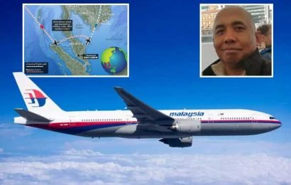 Missing MH370's captain 'hijacked plane in violent axe rampage' according to former Boeing pilot's theory