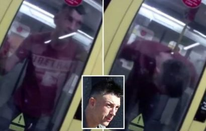 Moment thug who attacked train driver while naked gets arrested after headbutting doors and hurling himself at cops