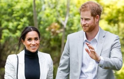 Meghan Markle & Prince Harry Planning Royal Tour of Africa with Baby Sussex in Fall 2019
