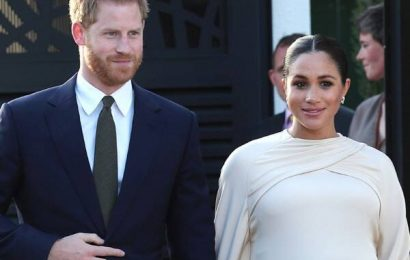 Meghan Markle & Prince Harry Planning Africa Tour With Royal Baby?