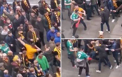 Watch Wolves thug spark Wembley brawl as he throws punches at Watford fans before being kicked to ground