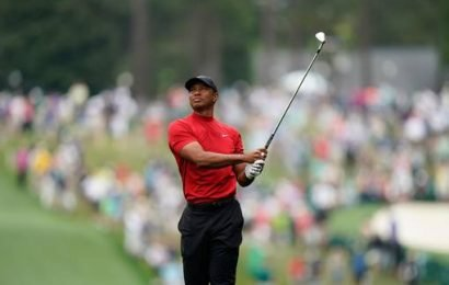 Stroke of genius: following in the Tiger's footsteps