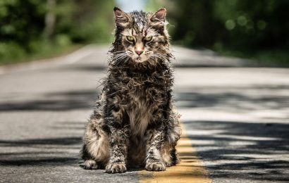 Pet Sematary animal actor Leo the cat dies after horror film's release