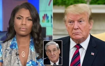 Omarosa Trump admin workers destroyed boxes of evidence for Mueller