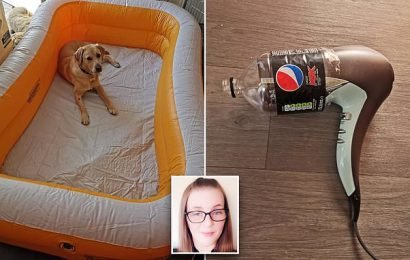 Mother reveals hack of how to blow up inflatables using a hairdryer