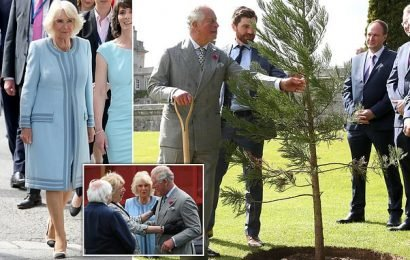 Prince Charles plants a tree during two-day trip to Ireland