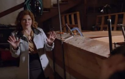 Who plays Diane on NCIS? Melinda McGraw returns, Joe Spano plays Fornell