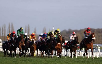 Saturday's Lockinge Stakes betting preview: Latest runners, riders and odds and trainer quotes for the final field