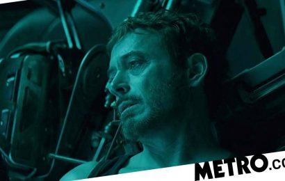 Could Avengers: Endgame theory explain hidden meaning in 'I love you 3000'?