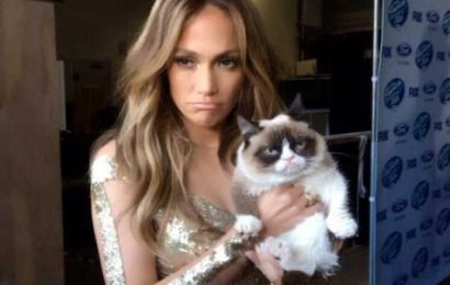 The Surliest Pics of Grumpy Cat and Her Many Celebrity Fans