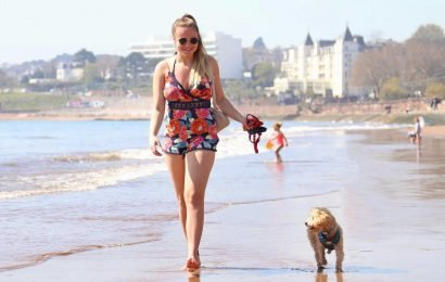 Dog owners could be fined £100 for walking their dog on the beach this summer