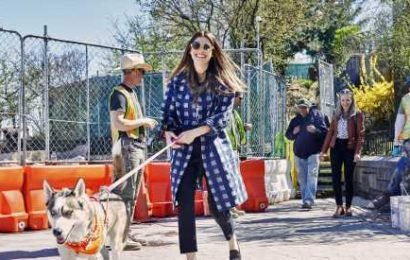 Lake Bell Goes Dog Walking on the Upper East Side