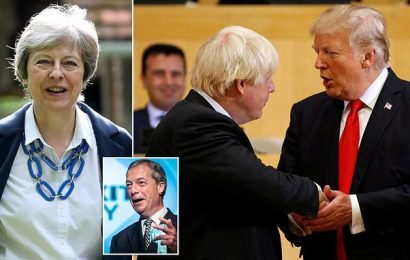 Will Donald humiliate May by having a cosy chat with Boris?