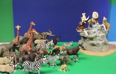Toy shop worker creates low-tech plastic version of The Lion King