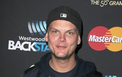 Avicii's Posthumous Album 'Tim' Drops & It Has Fans In Their Feels — 'I'm Ugly Crying'