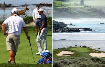 US Open: Tiger Woods putts as deer prances in distance as full beauty of picturesque Pebble Beach is revealed in stunning images