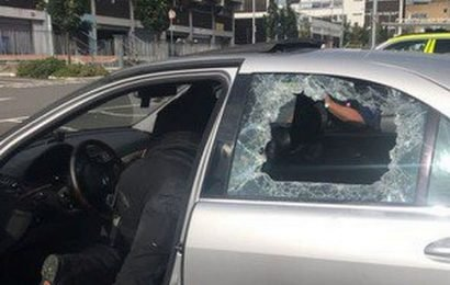 Police smash windows of boiling car to rescue trapped dog from sweltering heat