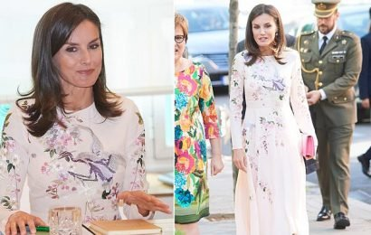 Queen Letizia of Spain attends a Workshop in Madrid